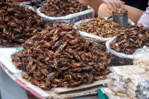 exotic-food-at-phnom-penh-markets