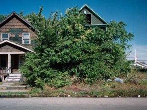 1300978300_detroit_homes_16