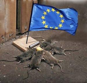 Ес и капан за мишки_n