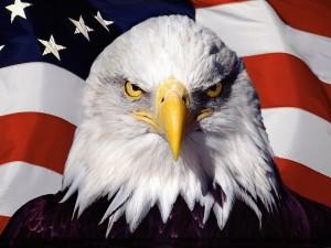 sick_america