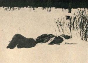 Убит болшевик