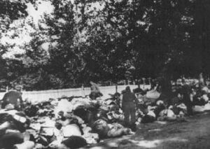 Бабий Яр Babi-Yar German soliders go through the belongings of Jews murdered in the ravine