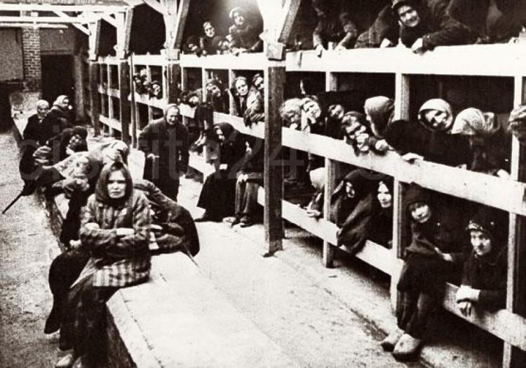 Освиенцим Аушвиц gevangenen_auschwitz
