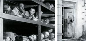 the_holocaust_violence_sf137
