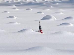 САЩ сняг n