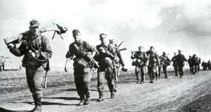 Естонски СС Наваа x6