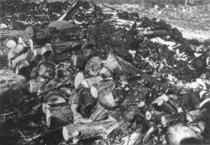 Клоога обгорели трупове 9