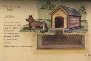 Землянка на бандеровци под кучешка колиба