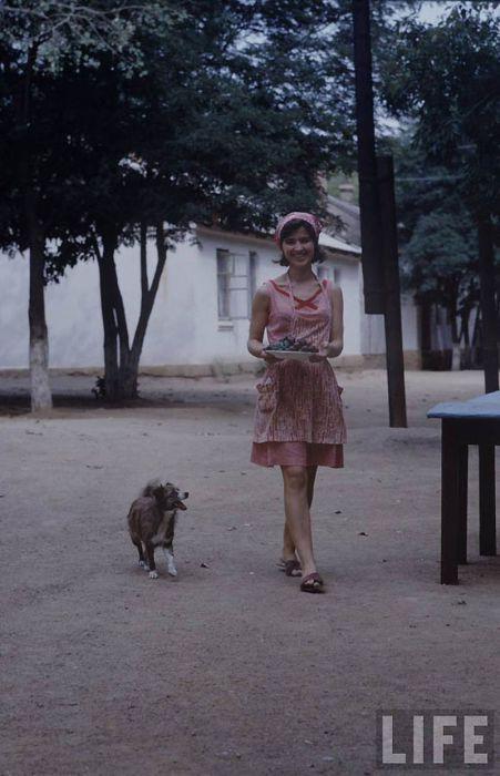 Щастливо момиче с куче